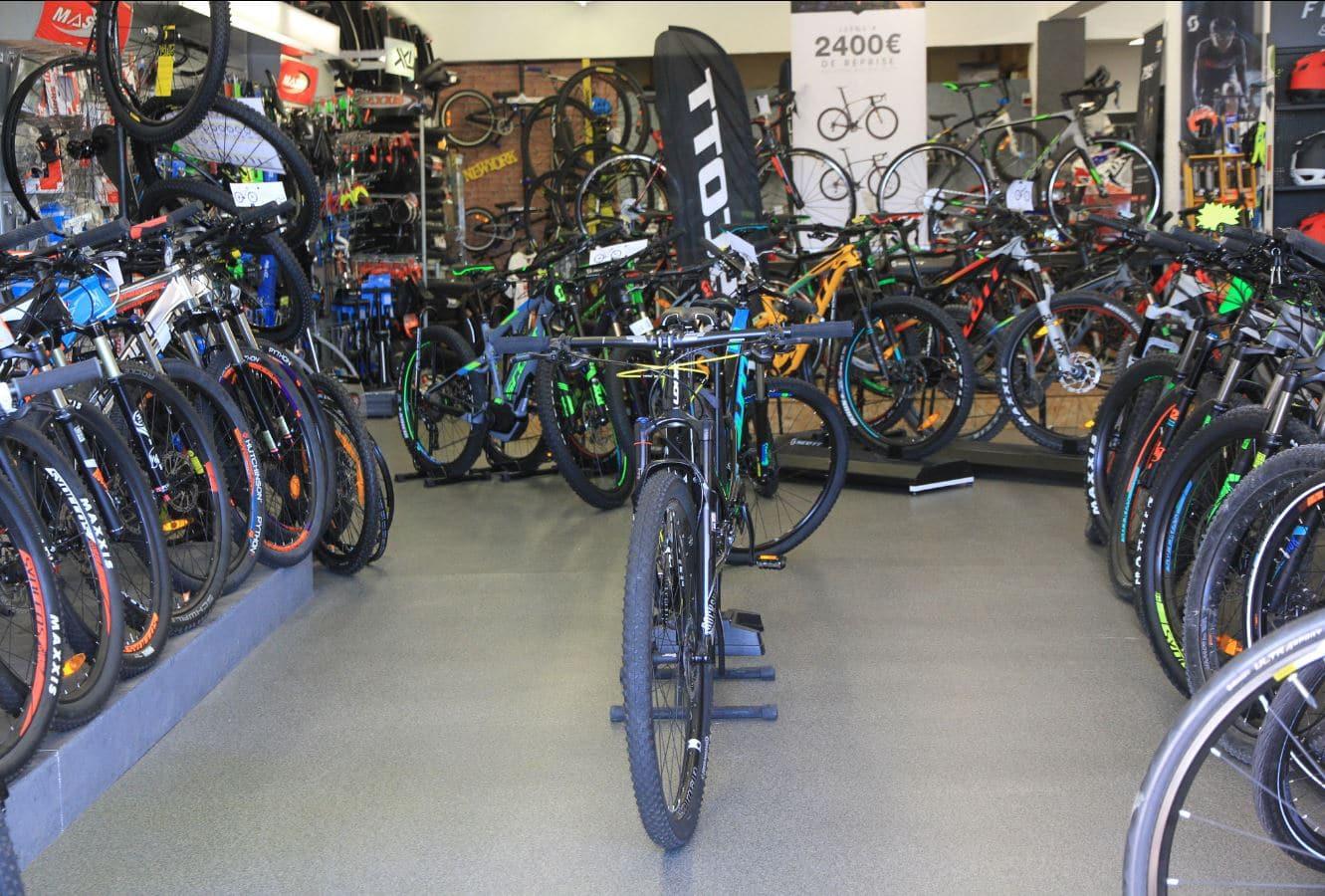 cycle img 2