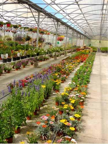 jardin de pernes img 2
